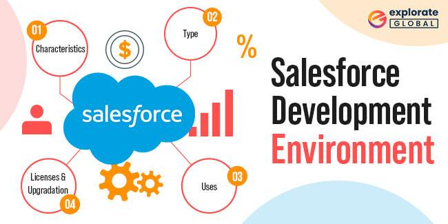 What Is Salesforce Development Environment?